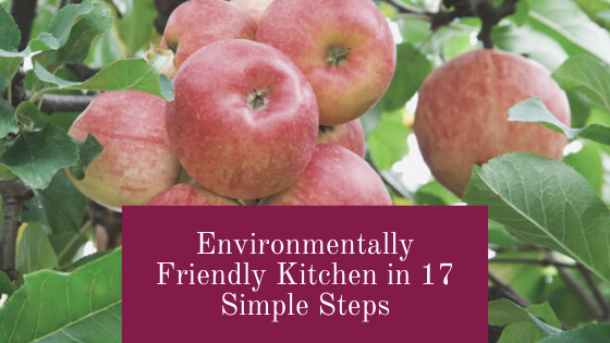 environmentally friendly kitchen in 17 simple steps